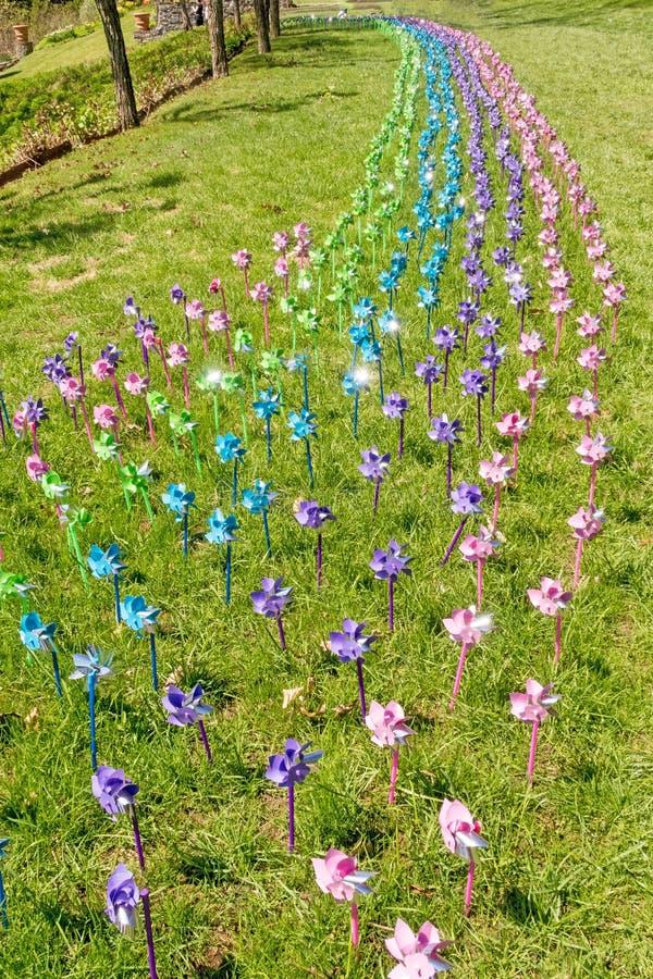 Molinillos de viento mezclados del color en viento en c?sped de la hierba imágenes de archivo libres de regalías
