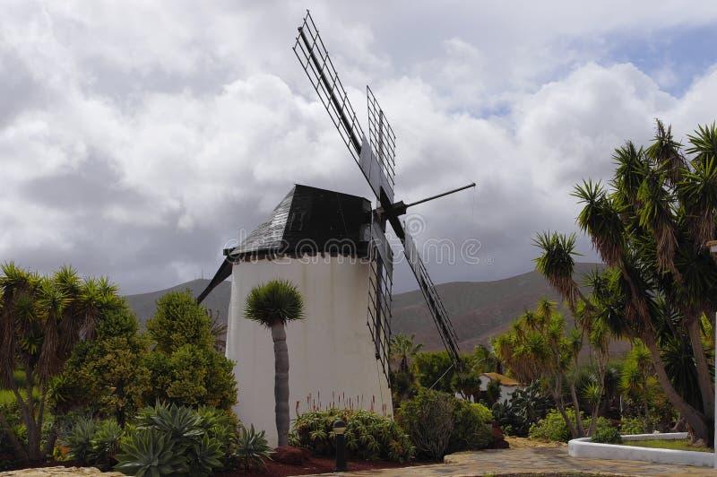 Molino de安提瓜岛 库存照片