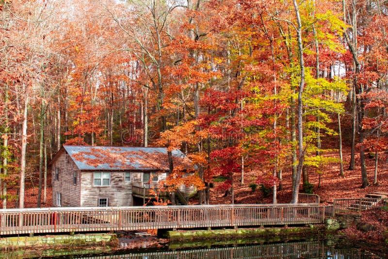 Molino de agua viejo en el bosque foto de archivo libre de regalías