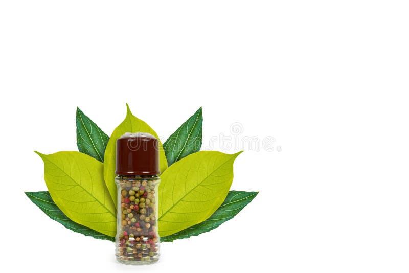 molino de pimienta de cristal en el fondo de hojas verdes Aislado en blanco noción del origen natural foto de archivo