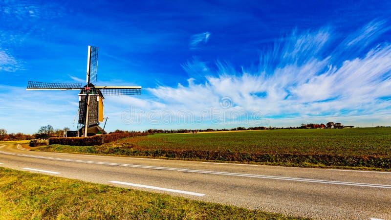 Molino de viento al lado de un camino y un campo del cultivo en un día soleado maravilloso imagen de archivo libre de regalías