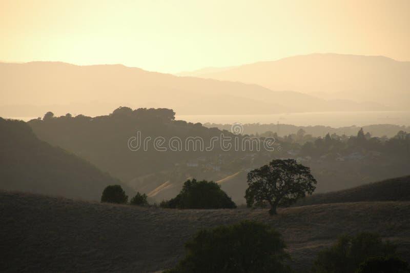 Molino de viento californiano imágenes de archivo libres de regalías