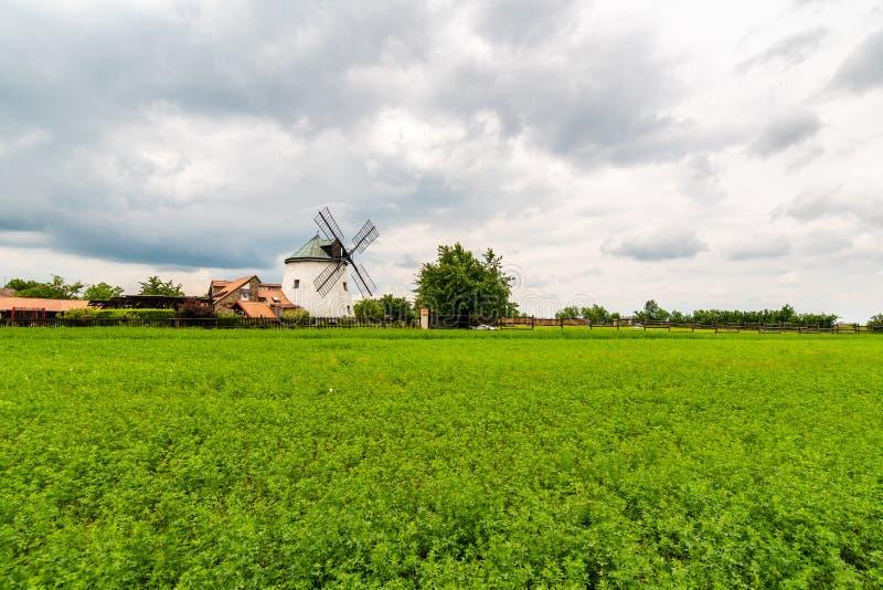 Molino de viento cerca del campo con la planta creciente Escena rural de la agricultura Tiempo nublado después de la lluvia, nube imagenes de archivo