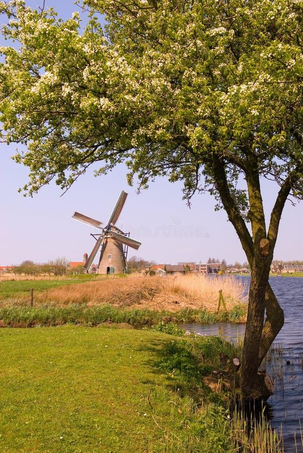 Molino de viento de Kinderdijk fotos de archivo libres de regalías
