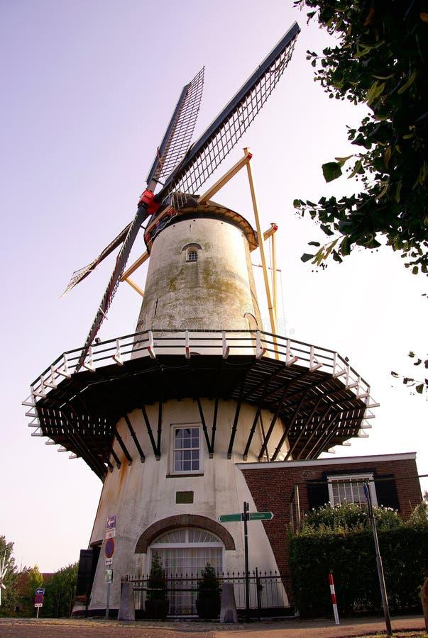 Molino de viento del maíz foto de archivo libre de regalías