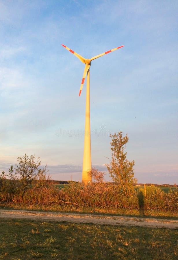Molino de viento en la puesta del sol que se coloca en un campo de maíz en verano tardío imagenes de archivo