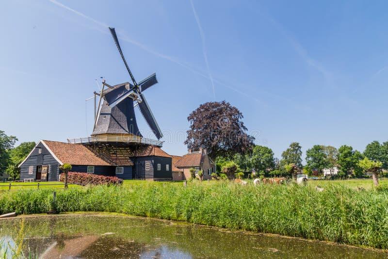 Molino de viento en Rijssen Holanda foto de archivo