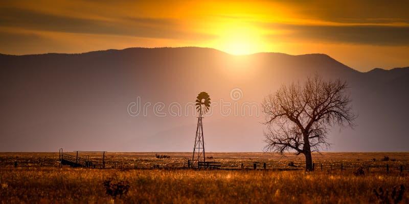 Molino de viento y un árbol en la puesta del sol fotos de archivo libres de regalías