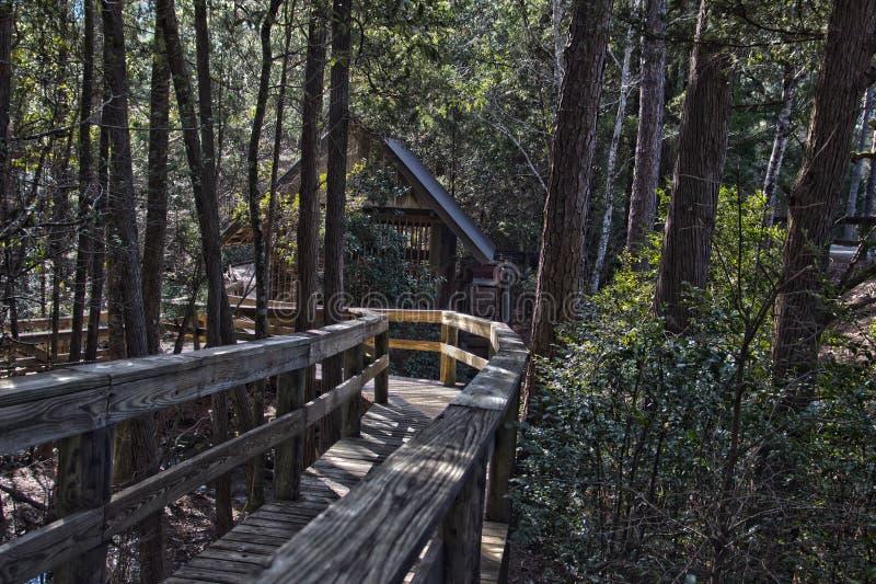 Molino viejo en el bosque en HDR fotos de archivo