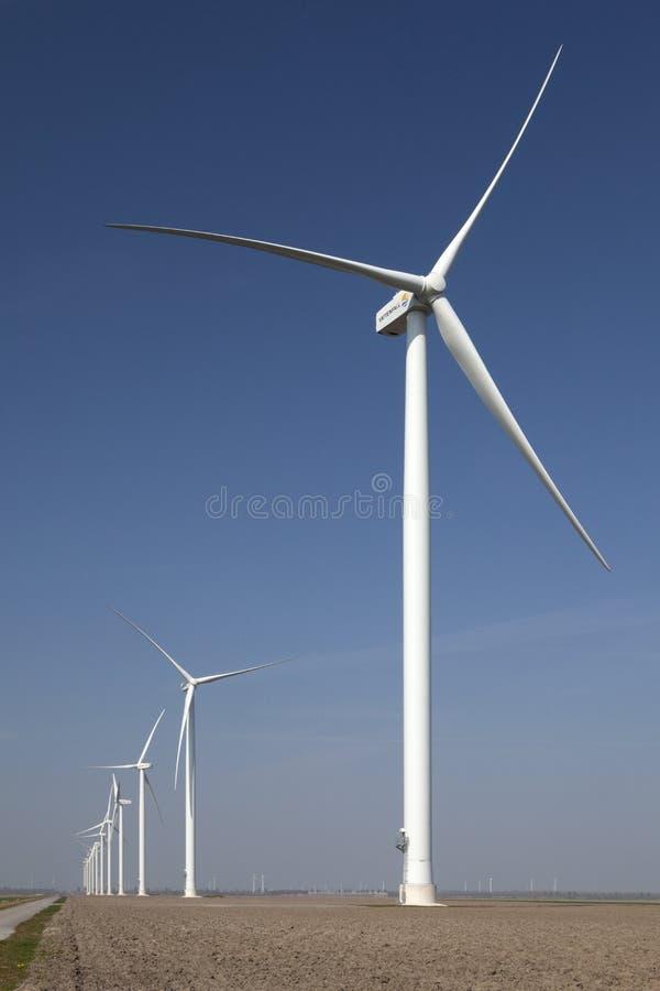 Molinoes de viento en Holanda imágenes de archivo libres de regalías