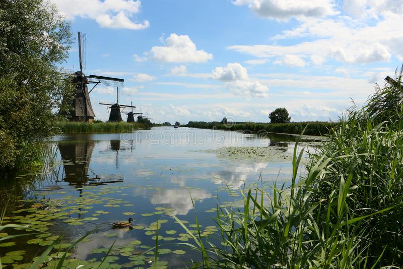 Molinoes de viento en Kinderdijk, los Países Bajos foto de archivo