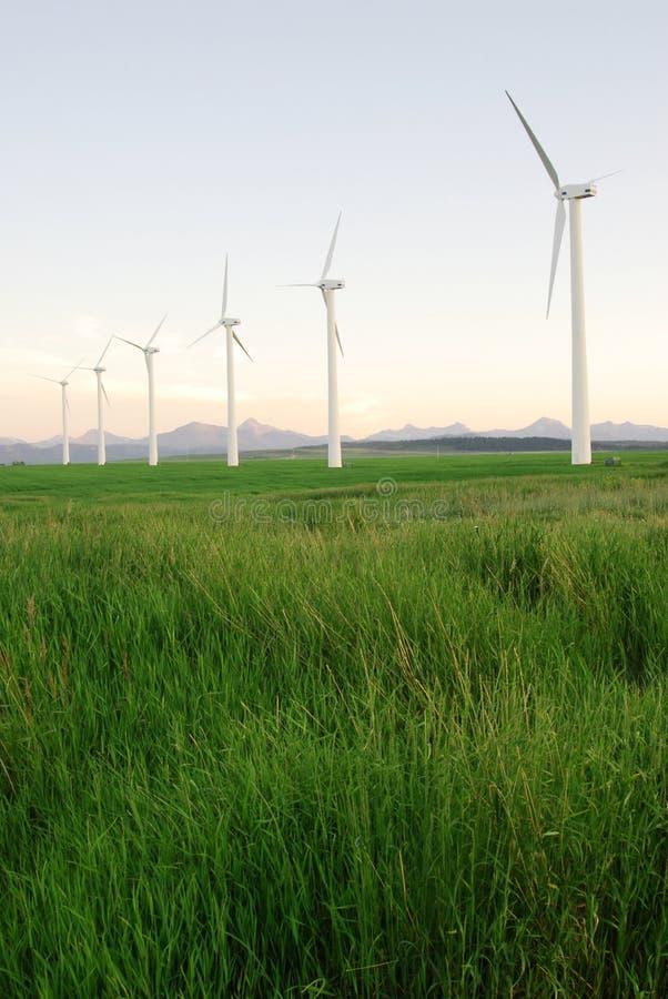 Molinoes de viento en la oscuridad imagen de archivo libre de regalías