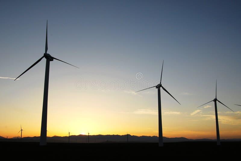 Molinoes de viento en la puesta del sol foto de archivo