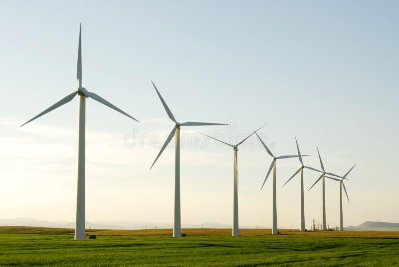 Molinoes de viento en pradera foto de archivo libre de regalías