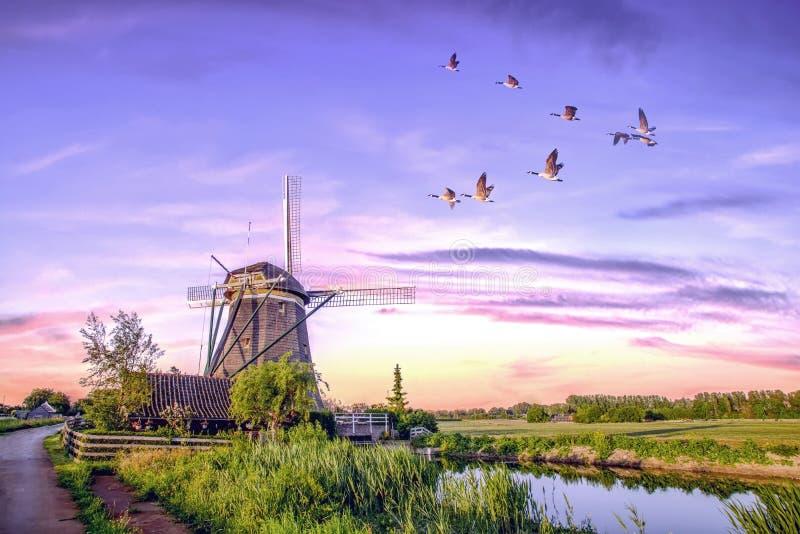 Molinoes de viento holandeses de la salida del sol foto de archivo libre de regalías