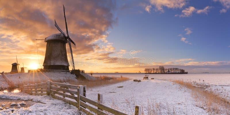 Molinoes de viento holandeses tradicionales en invierno en la salida del sol fotografía de archivo