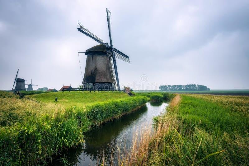 Molinoes de viento holandeses viejos en paisaje frío de la mañana cerca de Amsterdam fotografía de archivo libre de regalías