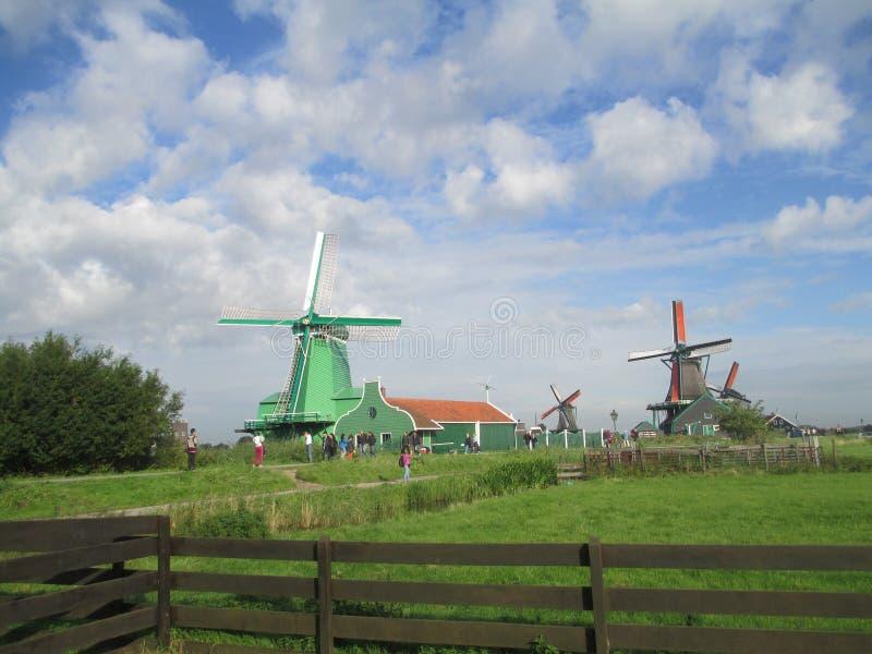 Molinoes de viento, Zaanse Schans imágenes de archivo libres de regalías