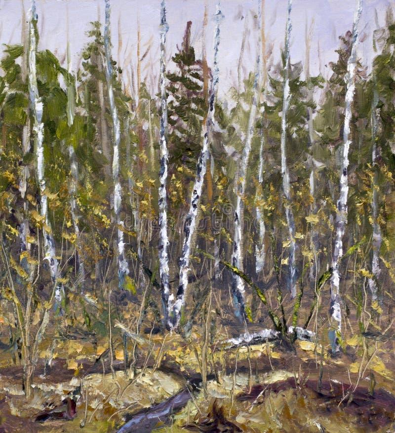 Molla in anticipo in autunno tardo della foresta Foresta, alberi, cespugli, betulle, alberi di Natale illustrazione vettoriale