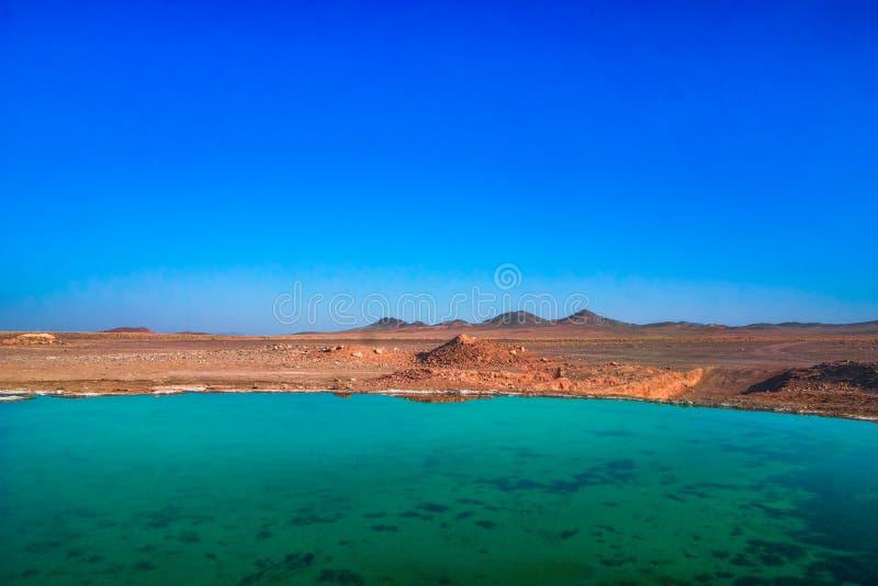 Molla d'acqua dolce nel deserto dell'Iran fotografia stock