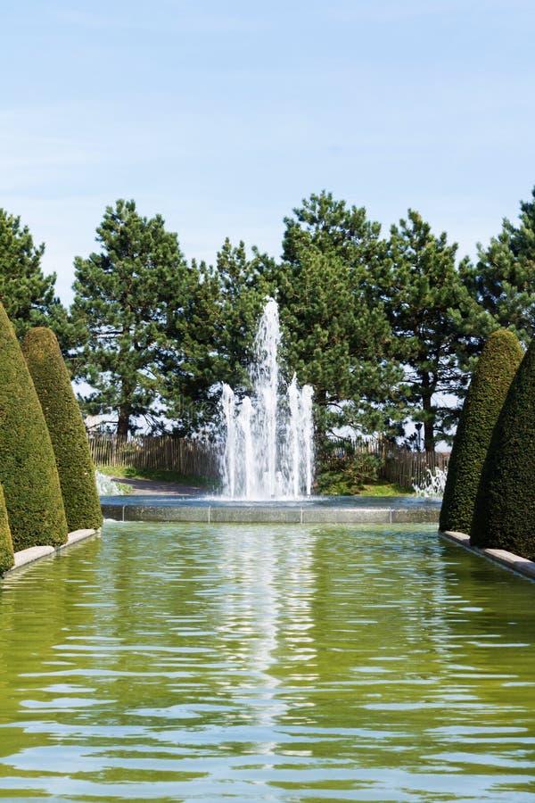 Molla degli alberi della via della fontana fotografie stock