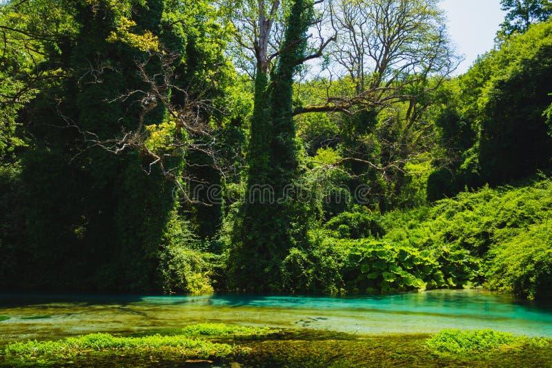 Molla e fiume dell'occhio azzurro in Albania, area di Saranda fotografie stock
