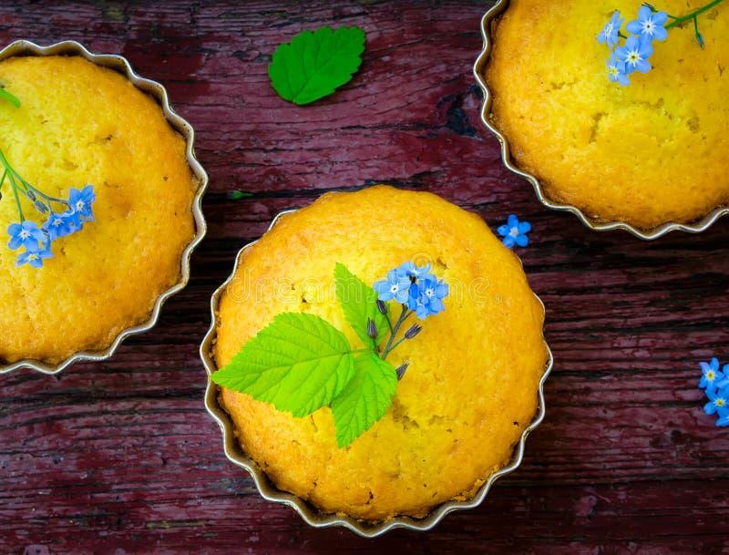 Molletes con las flores azules imagenes de archivo