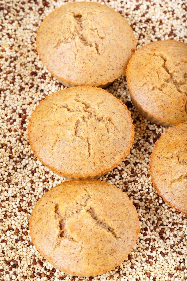 Molletes hechos en casa de la quinoa El gluten libera las magdalenas fotografía de archivo libre de regalías