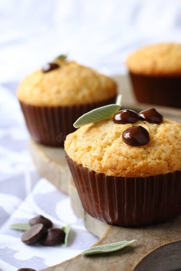 Molletes libres del gluten hecho en casa delicioso con gotas de chocolate fotos de archivo libres de regalías