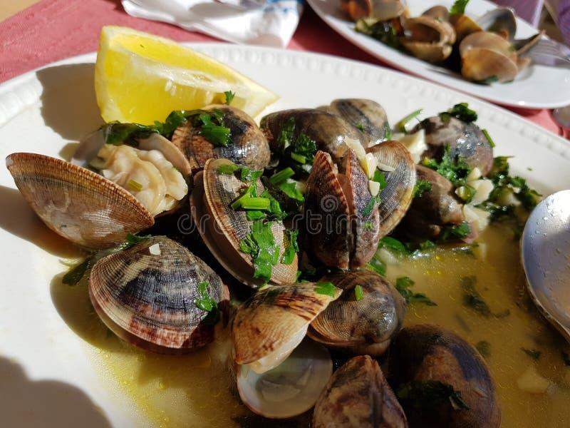 Molluschi cucinati immagini stock