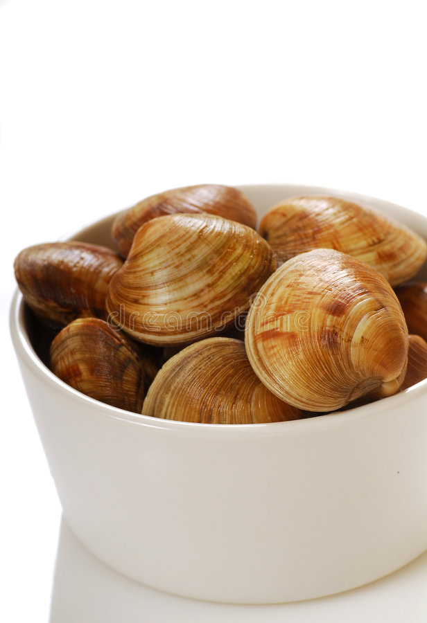Molluschi di cherrystone freschi in una ciotola fotografie stock libere da diritti