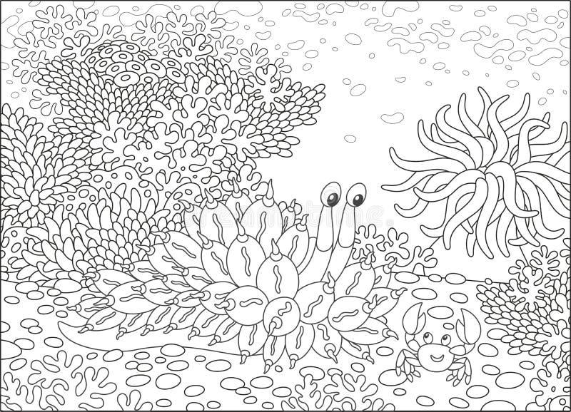 Molluske und Krabbe unter Korallen stock abbildung