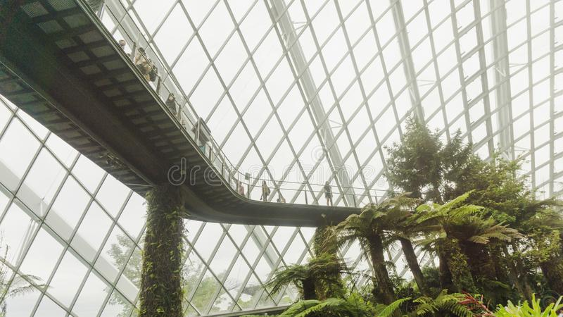 Moln Forest By fjärden i Singapore arkivfoton