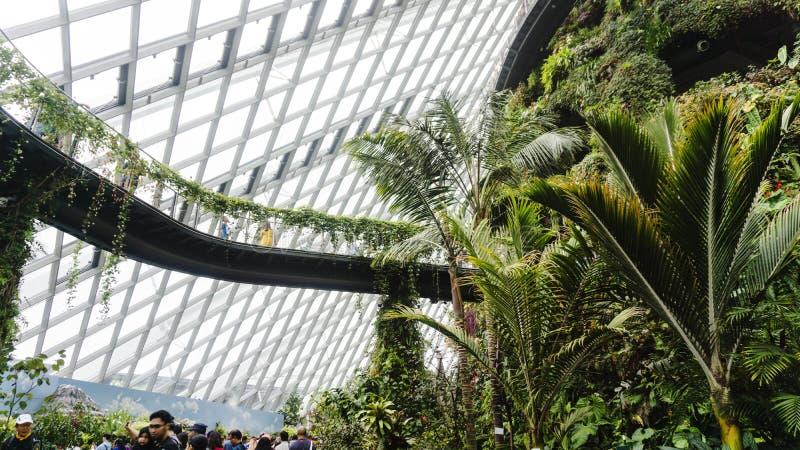 Moln Forest Garden By fjärden i Singapore royaltyfri bild