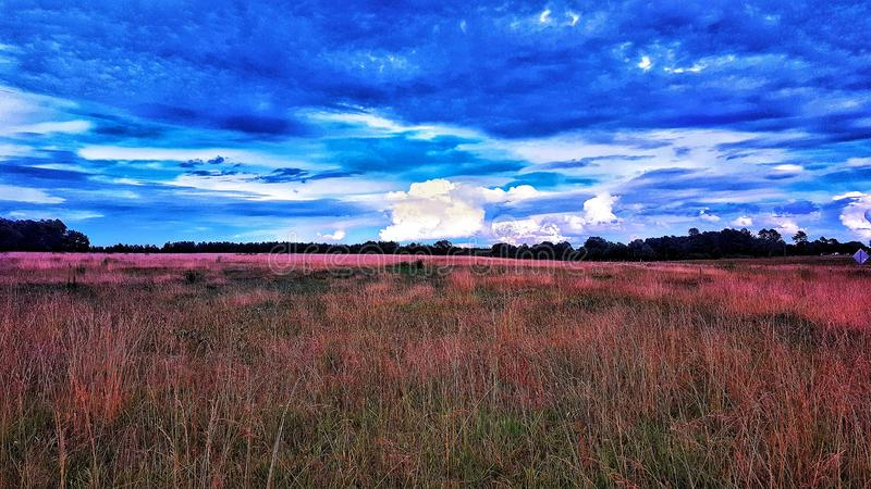 molnig dag fotografering för bildbyråer