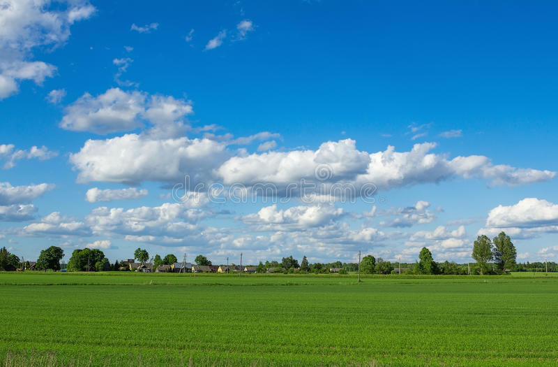 Molnig himmel över grönt fält arkivfoto