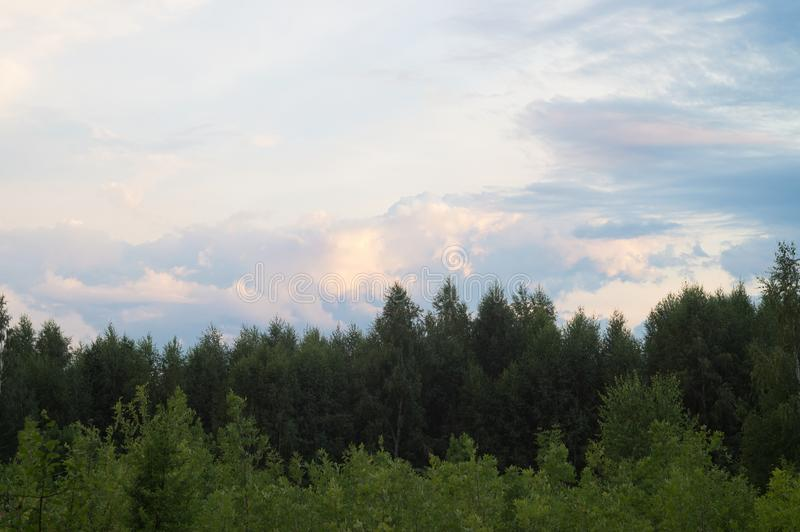 Molnigt sommarlandskap, härliga sceniska cirrusmolnmoln över en tät skog arkivfoton