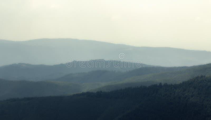 Molnigt väder i ukrainaren Carpathians, dimma stiger från skogen arkivbilder