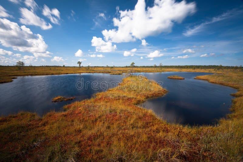 Molnreflexioner i träsksjön arkivfoton