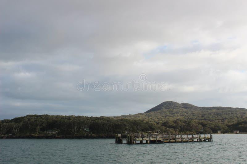 Molo di Rangitoto, baia di Hauraki, Auckland immagine stock