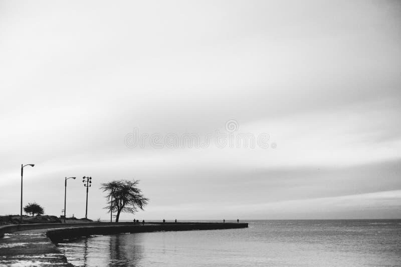 Molo w czarny i biały zdjęcie stock