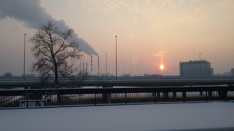 moloda halna słońca Ukraine widok zima zdjęcie royalty free