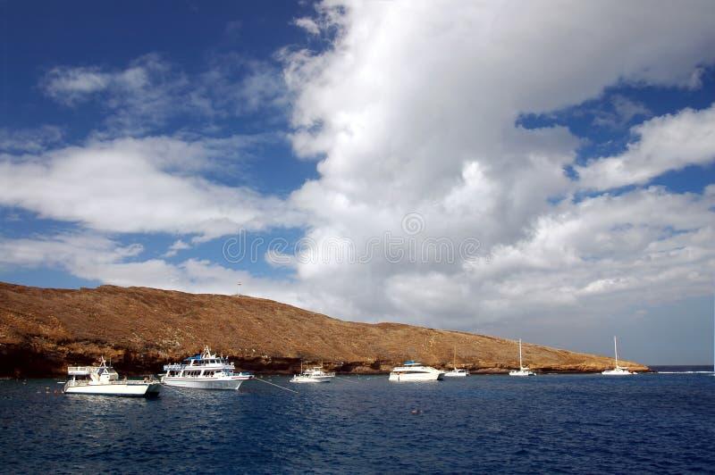 molokini礁石 免版税图库摄影