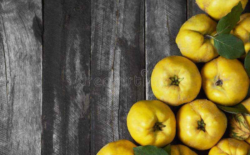 Molta cotogna della mela su fondo di legno scuro Vista superiore immagini stock