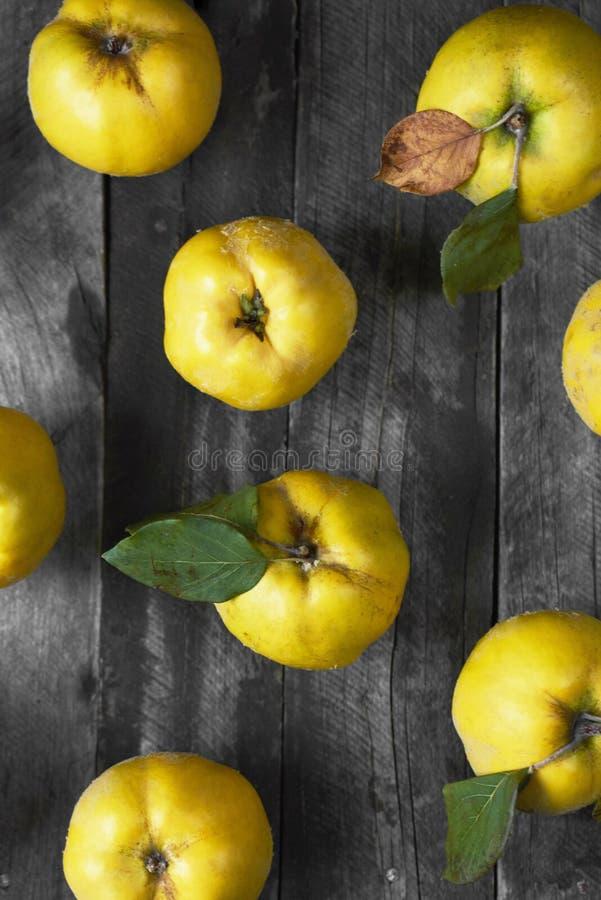 Molta cotogna della mela su fondo di legno scuro Vista superiore fotografie stock libere da diritti