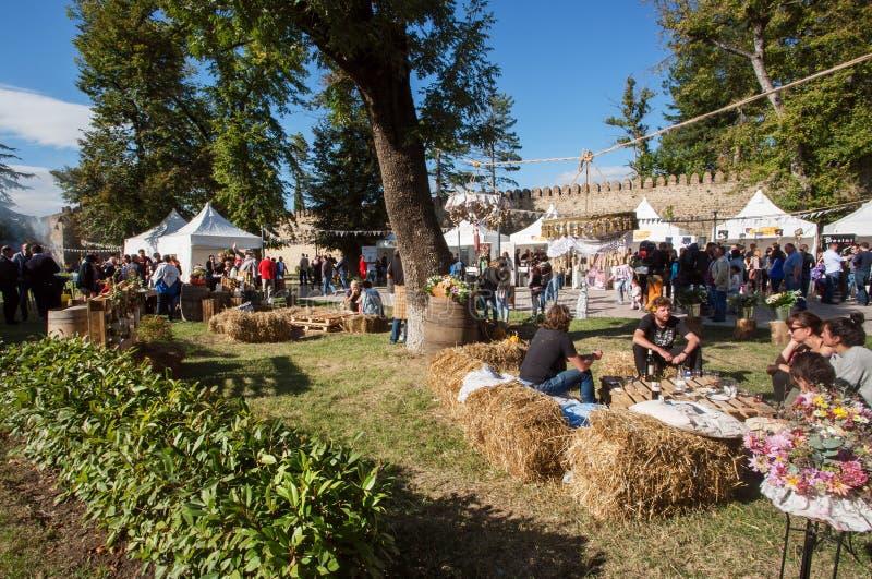Molta gente ha un resto su un picnic della città, sedentesi sul fieno durante il festival della via fotografie stock libere da diritti