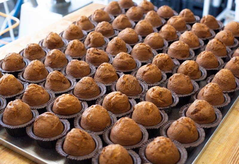 Molte caramelle al cioccolato fresche deliziose in muffin su vassoio, sfondo, spazio per copie, dessert, fabbricazione immagini stock libere da diritti