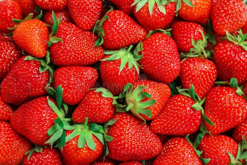 Molte fragole rosse mature come fondo fotografia stock libera da diritti