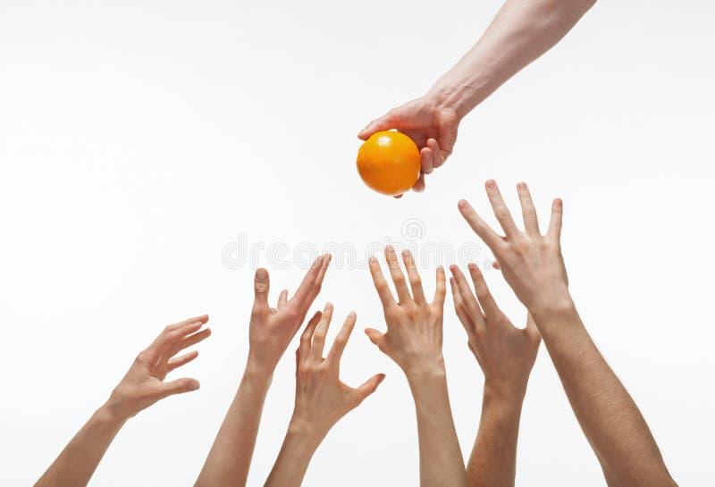 Molte mani vogliono ottenere arancio fotografie stock libere da diritti