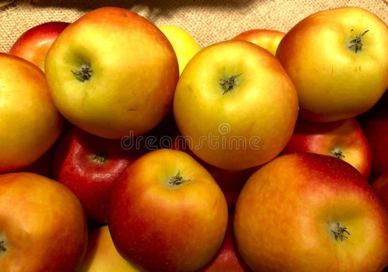 Molte mele gialle fresche con un lato rosso stanno trovando su un sacco in un deposito fotografia stock libera da diritti
